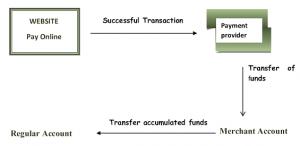 Indian Payment Gateways